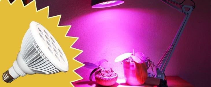 LED Wachstumslampe